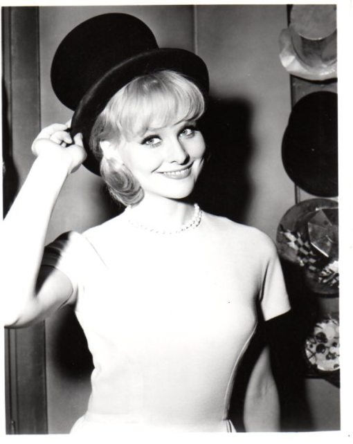 diane-mcbain-top-hat1[1]