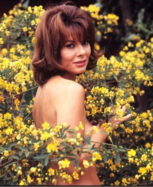 anne-heywood-fllowers[1]